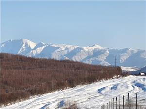Teren de 930 mp in Tocile la 12 km de Sibiu