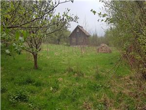 Teren de vanzare in Tocile langa Sibiu