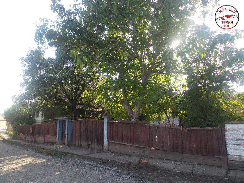 Casa de vanzare in armeni cu 4000mp teren 4484 - Terenes casa rural ...