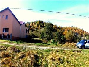 Teren de vanzare in Sebesul de Sus, Valea Moasei